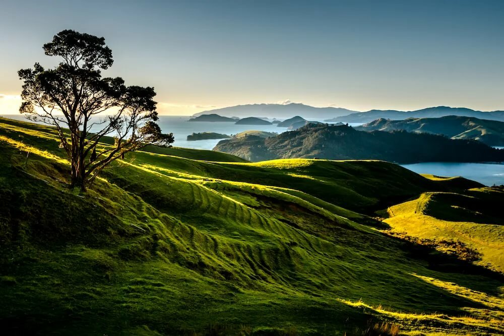 Immigration to New Zealand | zealand