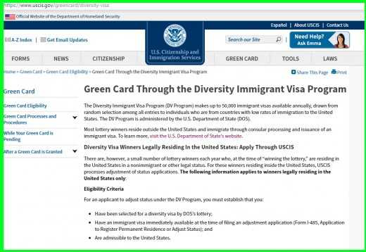 American visa lottery application form & instructions 2019/2020 – www.dvlottery.state.gov - schoolgh.com